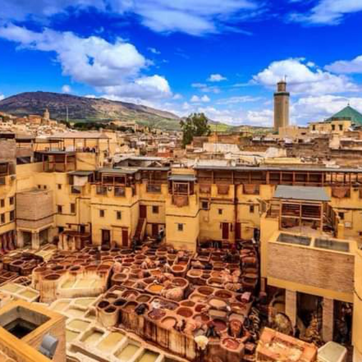 visit Fes with local guide
